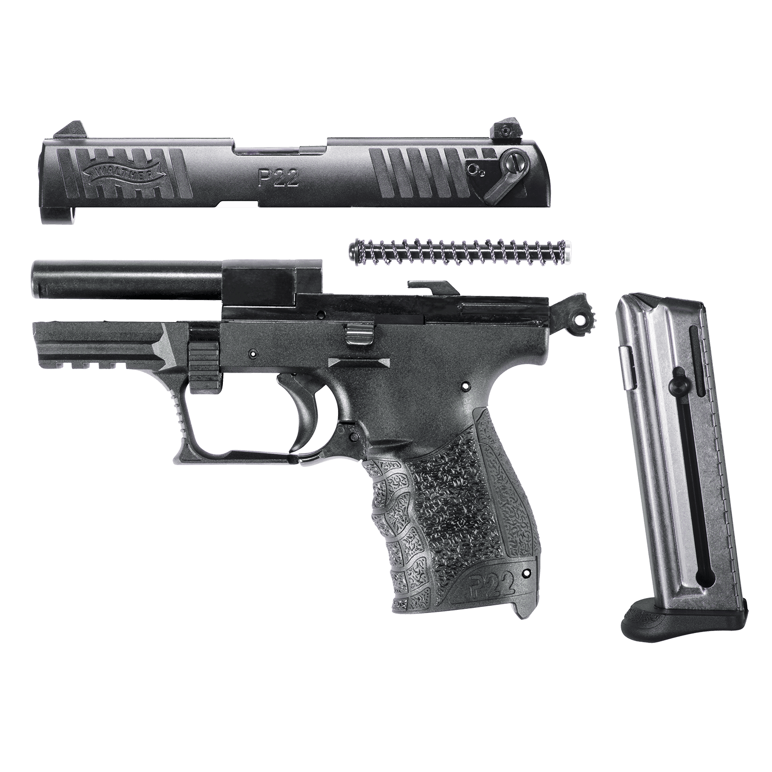 Walther P22 Review - Our Thoughts 2